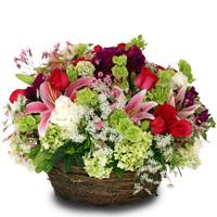 Florerias Picassoflores Com Compra En El Mejor Sitio De Flores Con